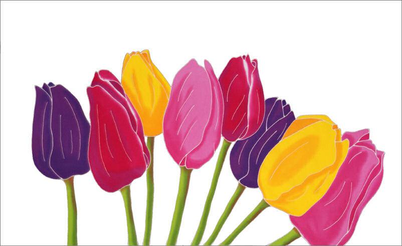 tulipe blanche